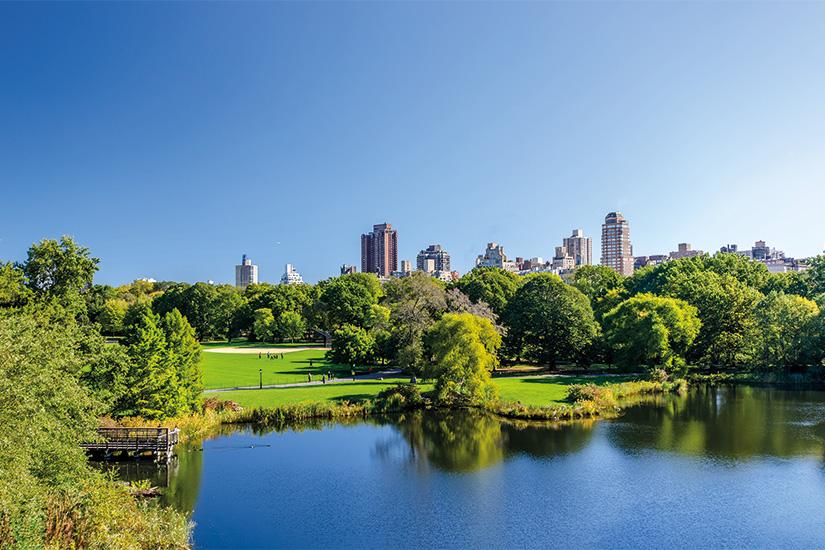 image 1 vue de parc central a Manhattan avec parc a la journee ensoleillee New York ville Etats Units 21 as_93534410