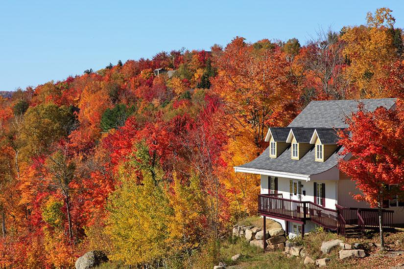 image Canada Quebec Mont Tremblant villa automne  fo