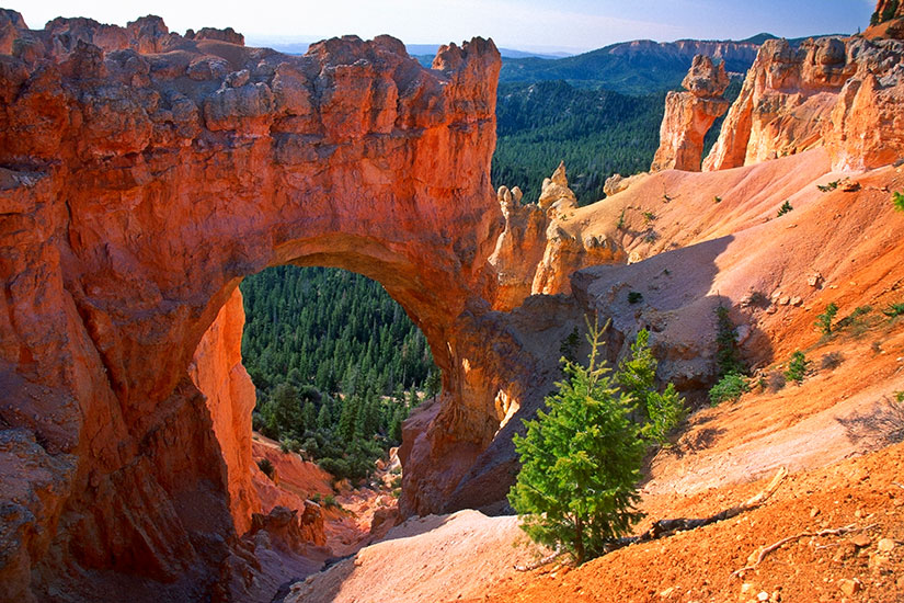 image Etats Unis Bryce Canyon Pont naturel  it