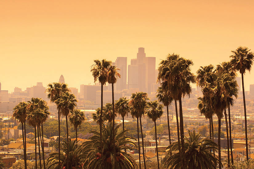 image Etats Unis Californie Los Angeles Les palmiers  it