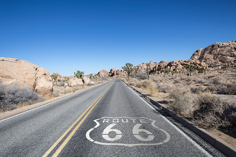 image Etats Unis Joshua Tree Desert Route   it