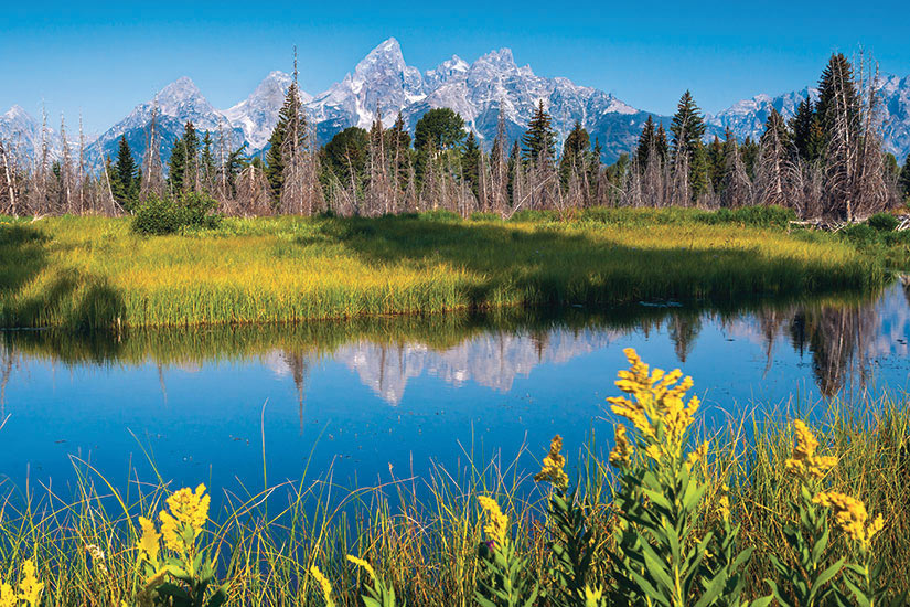 image Etats Unis Wyoming Parc Grand Teton  fo