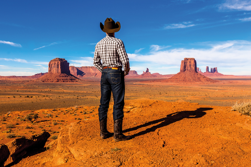image Etats Unis cowboy solitaire 10 as_76666972