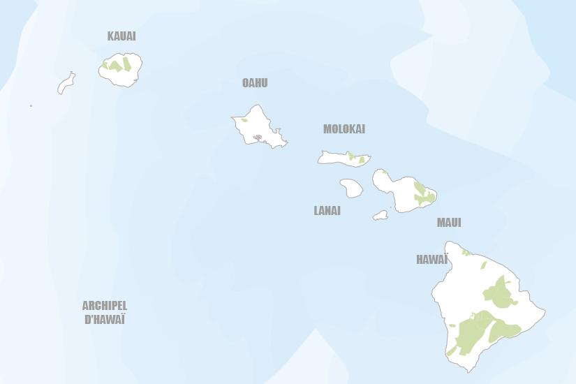carte USA Hawai cocktail de 4 iles Hugh 20_333 549246