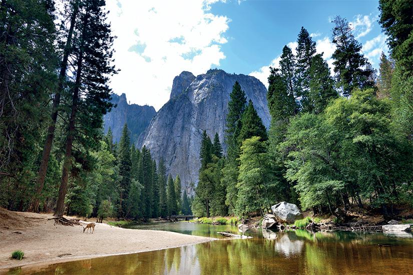 (image) image Parc National de Yosemite 77 it 509307146