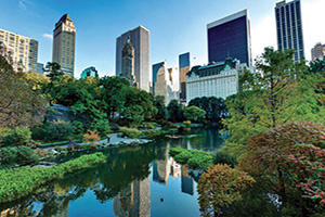 etats unis new york central park  it